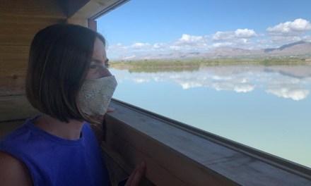 El parque natural de El Hondo en Elche estrena un observatorio de aves