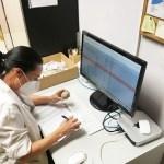 Una nueva subvención de la Diputación impulsa al Museo Paleontológico de Elche