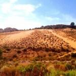 Medio Ambiente de Petrer organiza una visita teatralizada en el Arenal de l'Almorxó el 18 de octubre