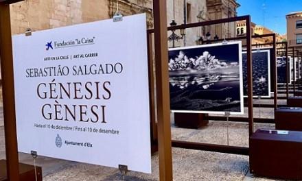 """La Plaça del Congrés Eucarístic d'Elx acull l'exposició """"Gènesi"""" de Sebastiao Salgado per a mostrar l'autèntica naturalesa a peu de carrer"""