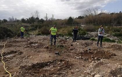 Comença la plantació d'espècies de ribera que la Conselleria de Transició Ecològica està duent a terme al riu Algar d'Altea
