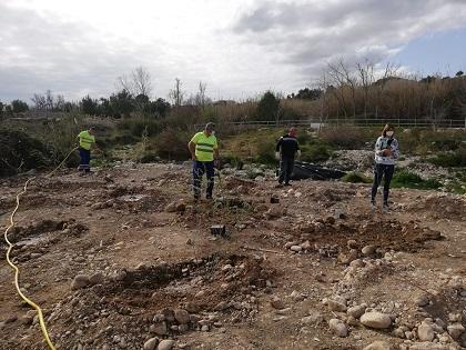 La Consellería de Transición Ecológica comienza la plantación de especies de ribera en el río Algar de Altea