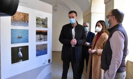 El claustre de San José acull fins al 29 d'abril una exposició amb més de 300 imatges de la vida natural en el Clot de Galvany d'Elx durant l'època tardorenca