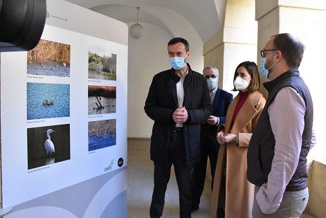 El claustro de San José acoge hasta el 29 de abril una exposición con más de 300 imágenes de la vida natural en el Clot de Galvany de Elche durante la época otoñal