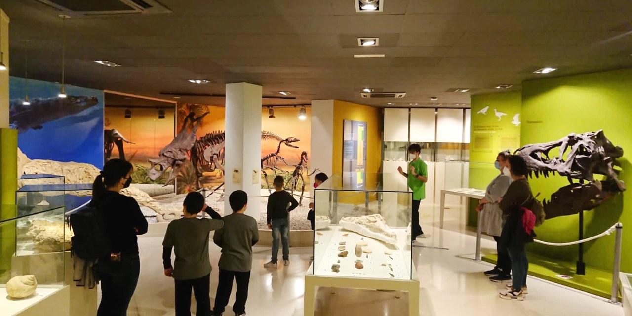 Les visites al Museu Paleontològic d'Elx augmenten un 28% en Setmana Santa