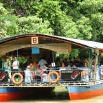 Floating restaurant loboc riverwatch bohol12