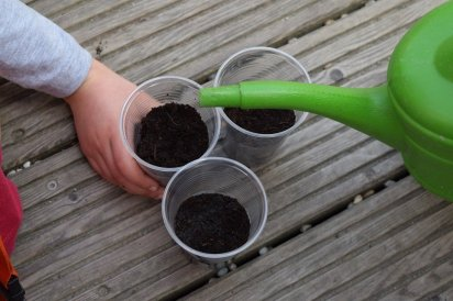 preparing your soil for seeds
