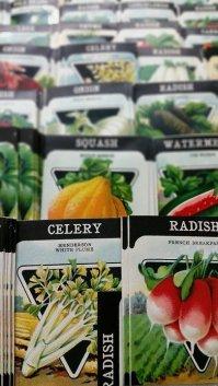 choose your seeds indoor starting