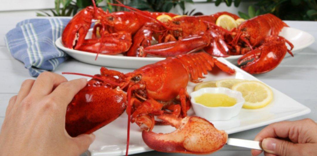 Eat More Lobster