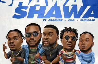DJ Neptune ft. Olamide, CDQ, Slimcase & Larry Gaaga – Shawa Shawa