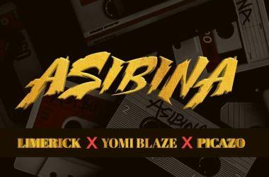 Limerick xYomi Blaze x Picazo – Asibina
