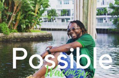 Waconzy – Possible
