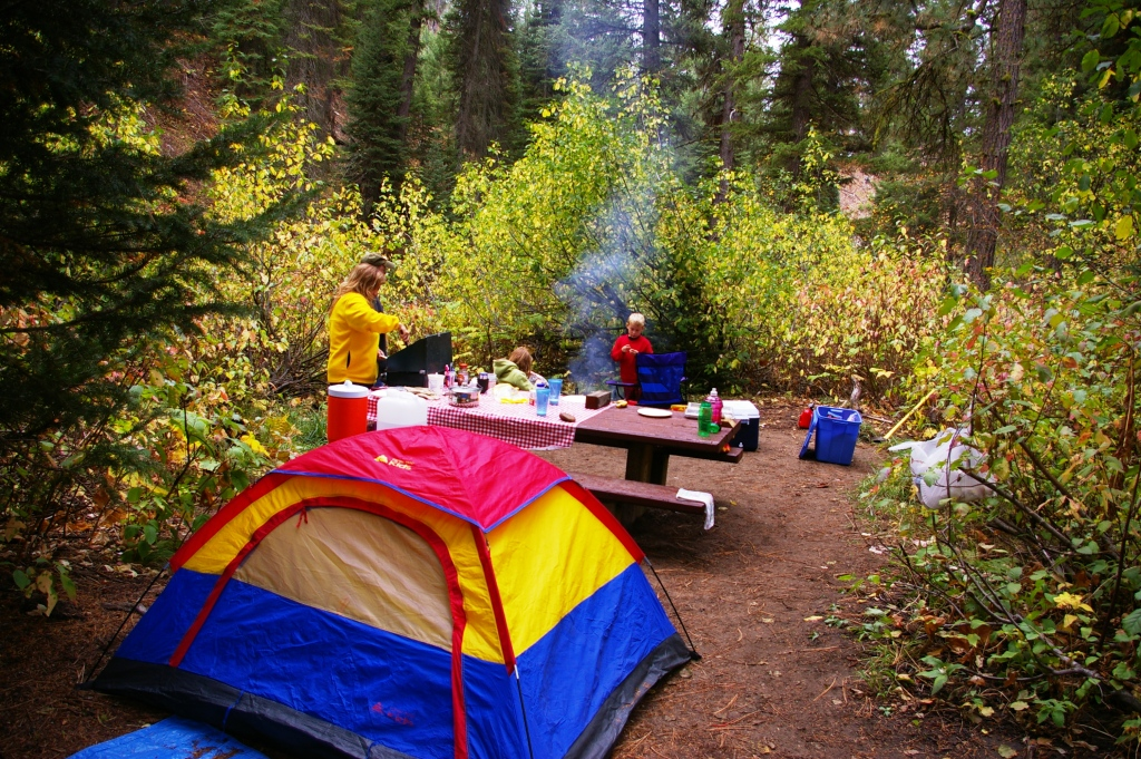 minnesota national forests reopen