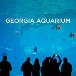 Georgia Aquarium | Tourists At Home Atlanta Edition