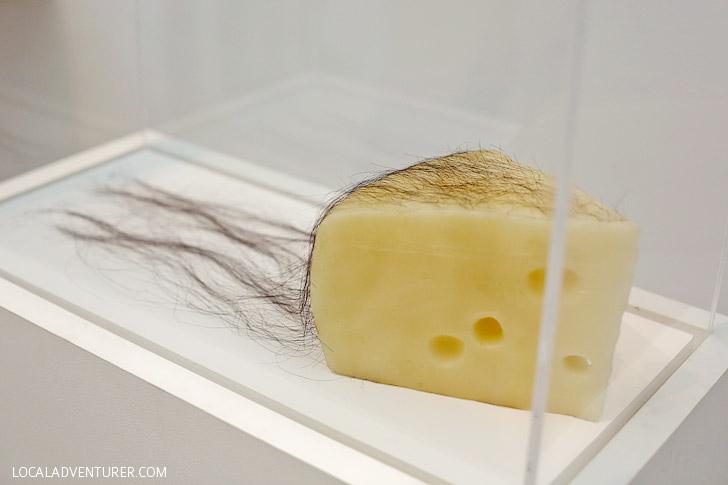 LA Museum | LA CMA Modern Art | Long Haired Cheese Robert Gober