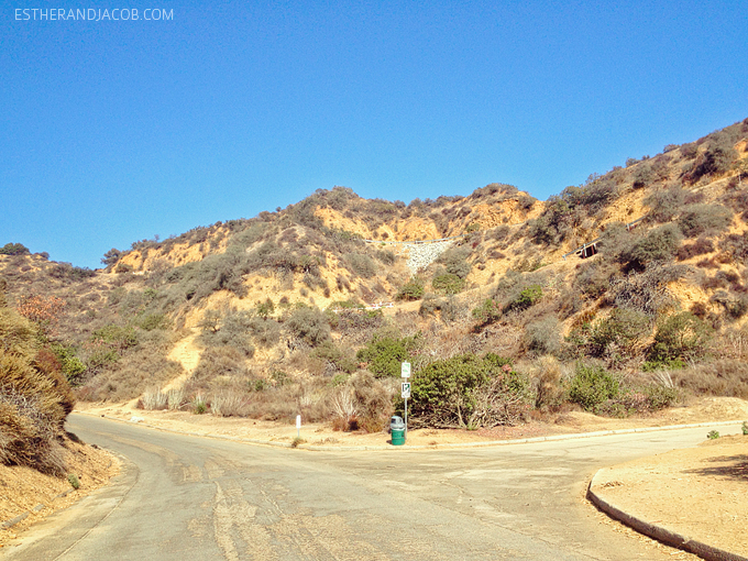 a fork in the road while hiking to the hollywood sign. hollywood sign hike address. hollywood sign hiking trail. hiking the hollywood sign. hollywood sign hike directions. hiking hollywood sign. local adventures LA.