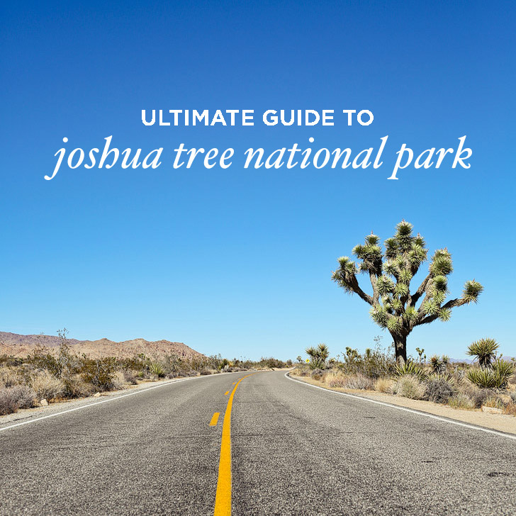 Ultimate Guide to Joshua Tree National Park // localadventurer.com