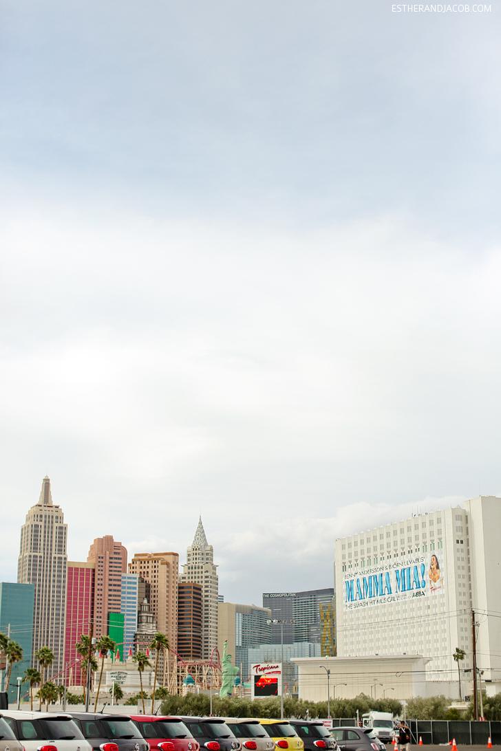 Las Vegas Foodie Fest | Las Vegas Festivals.