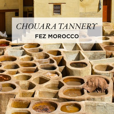 Colorful Sights and Strange Smells of the Chouara Tannery in the Fez Medina.