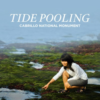 Tide Pooling - Finding Amazing Sea Life at the Cabrillo National Monument Tide Pools.