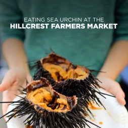 Eating Sea Urchin at the Hillcrest Farmers Market