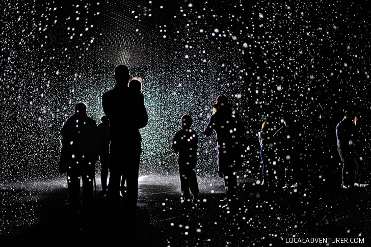 The Rain Room LACMA Museum - Los Angeles California.