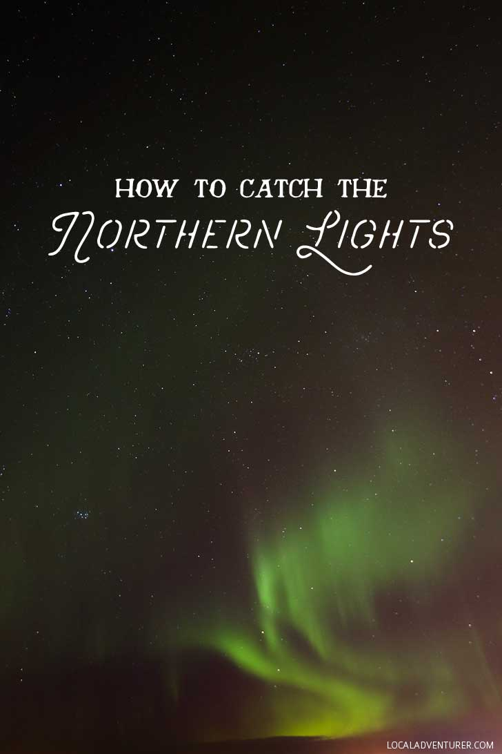 How to See the Northern Lights + Tips from Our Iceland Trip // localadventurer.com