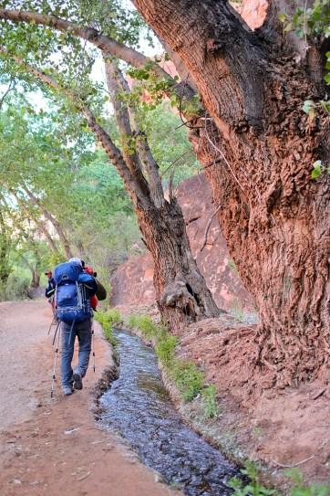 The Hike to Havasu Falls // localadventurer.com