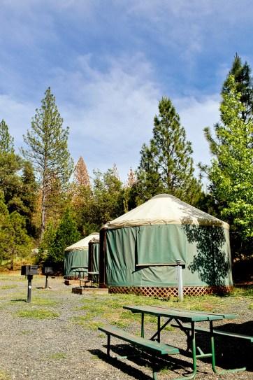 Glamping in Yosemite Yurts - Yosemite Pines RV Resort & Family Lodging // localadventurer.com