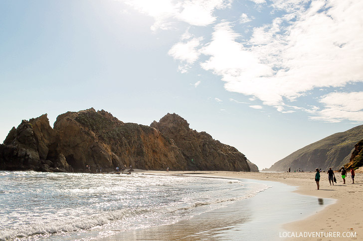 Pfeiffer State Beach - famously known for its purple sand is in Big Sur, Monterey County, California // localadventurer.com