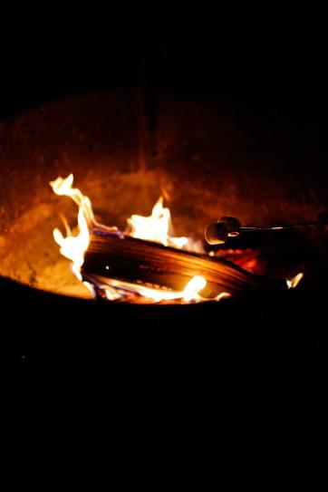 Belle Campground Joshua Tree National Park California // localadventurer.com