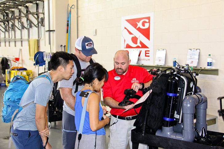 Rebreather Dive Georgia Aquarium // localadventurer.com