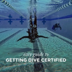 Easy Guide to Getting Dive Certified