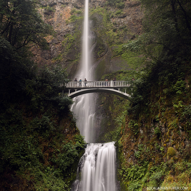 Multnomah Falls (15 Best Day Trips from Portland Oregon) // localadventurer.com
