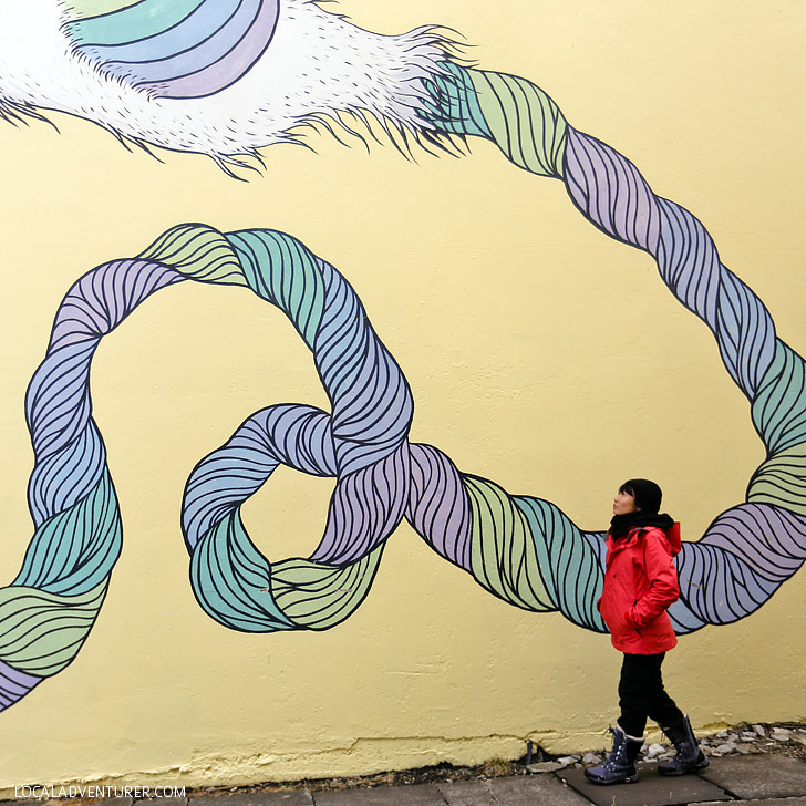 Street Art in Reykjavik (11 Interesting Things to Do in Reykjavik Iceland) // localadventurer.com