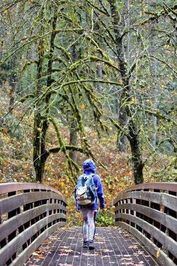 Silver Falls State Park Hikes // localadventurer.com