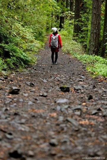 Elowah Falls Hike Near Portland // localadventurer.com