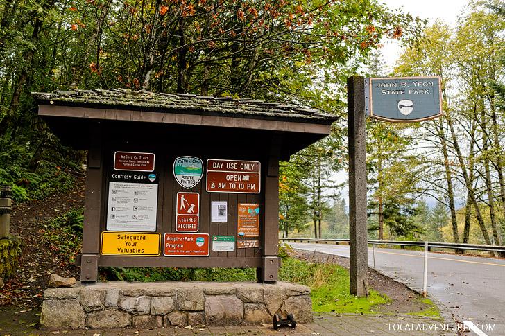 John B Yeon State Park - Trailhead for Elowah Falls // localadventurer.com