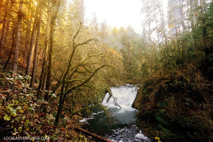 Lower North Falls Oregon Hike // localadventurer.com