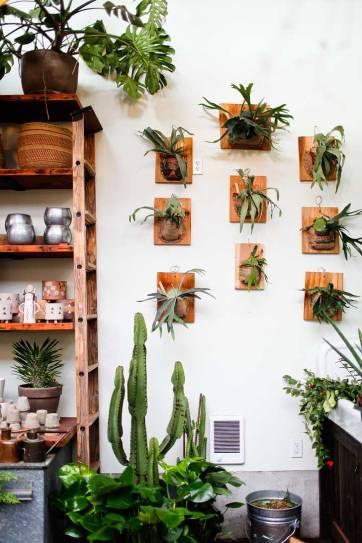 Pistils Nursery + 25 Best Instagram Spots in Portland Oregon // localadventurer.com