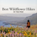 Best Hikes to See Pacific Northwest Wildflowers
