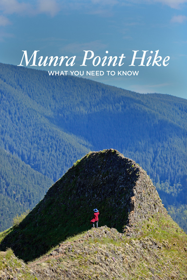 Munra Point Hike - Everything You Need to Know // localadventurer.com