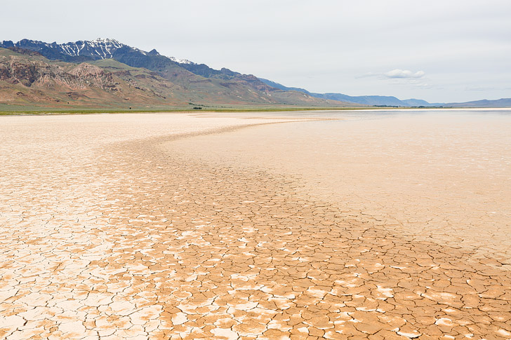 Alvord Desert and Steens Mountain in the Back, Eastern Oregon Road Trip // localadventurer.com