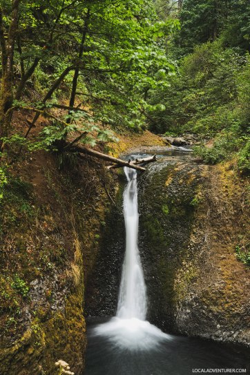 Middle Oneonta Falls Oregon - Hiking in the Columbia River Gorge // localadventurer.com