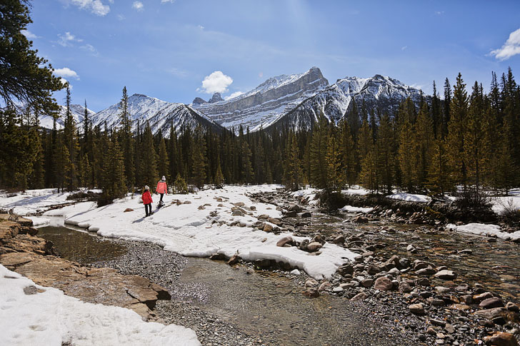 rockies heli canada snowshoe - 15 Unforgettable Things to Do in Jasper National Park