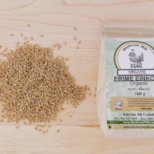 Daybreak Mill - Einkorn Grain - 500g