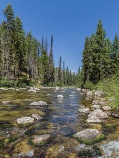 Secesh River-upstream