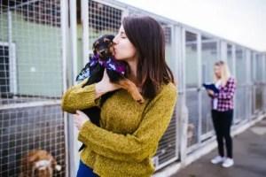 Woman at animal shelter