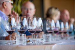 spanish-wines-126
