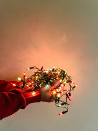 Male hands holding a christmas lights - vertical